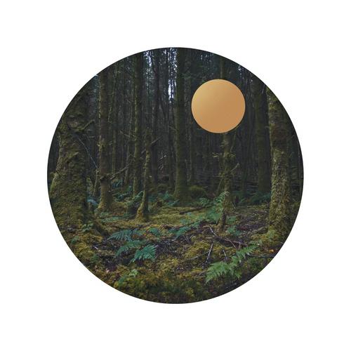 Forest Gold_Eden Hart.png