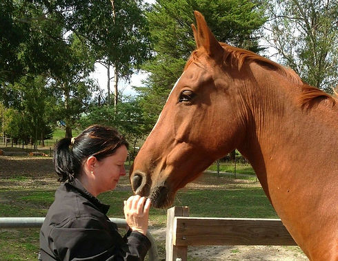 Bianca talking to rescue horse Franklin