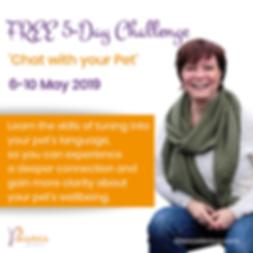 5-day Challenge with Bianca de Reus
