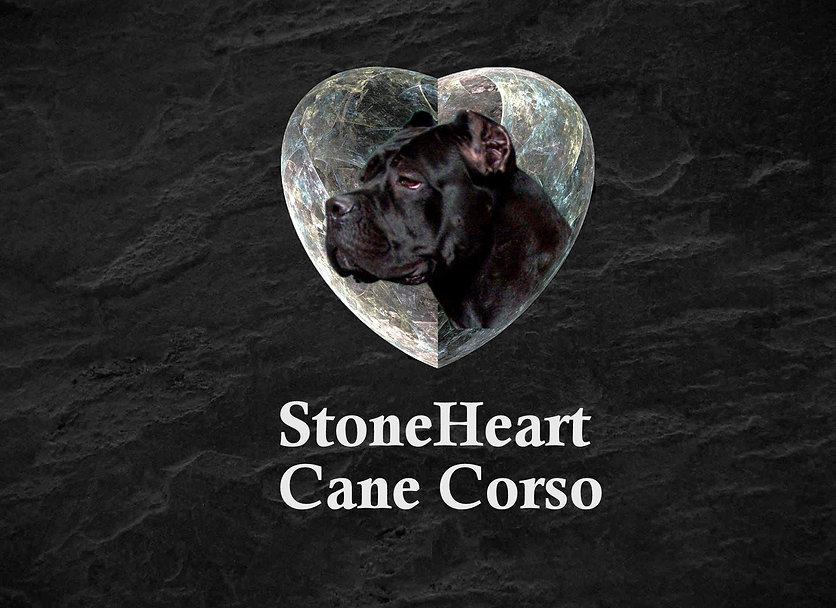 Stoneheart.jpg