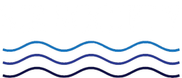 SIE Society__Logo (png)_White.png