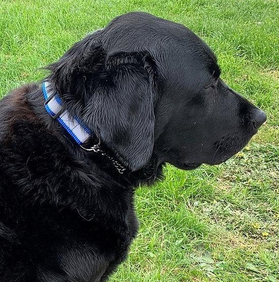 Nylon Martingale Half Check Dog Collar Reflective 4 colours