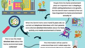Gemini Research Blog Series - Alice