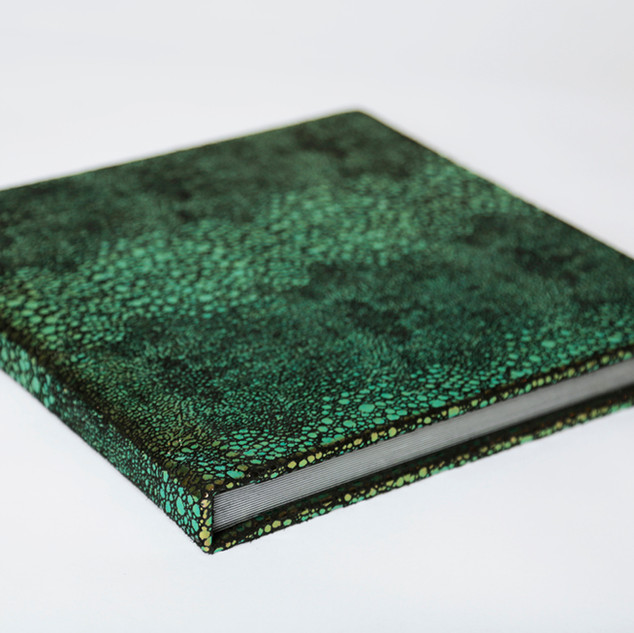 Designer Series Integrity Album - Mermaid (color changes when viewed at different angles and in different light.