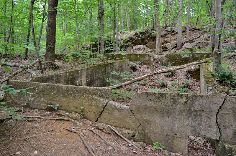 Ruins of the Cabin Branch Pyrite Mine (Sorting Mill)