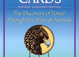 Native American Power Animals: Do Know Yours?