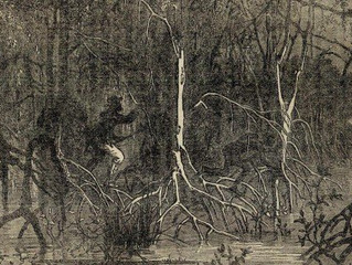 The Witch's Tree & the Selbyville Swamp Monster