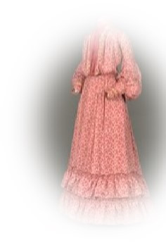 1880s farm era dress
