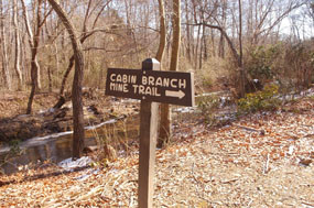 Cabin Branch Pyrite Mine Trail sign