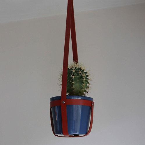 Hanging Planter   Cactus Plant