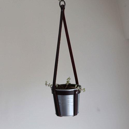 Hanging Planter | Tiny Succulent Plant