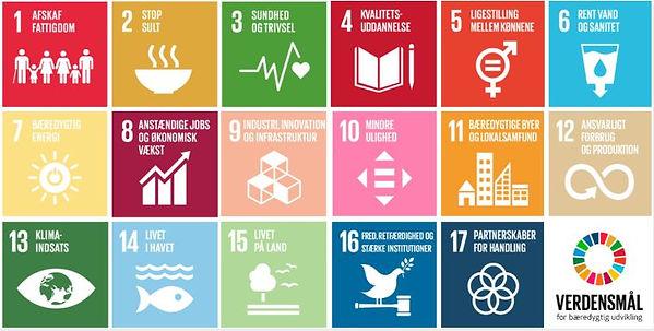 FN verdensmål.JPG