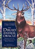 druid animal.jpg