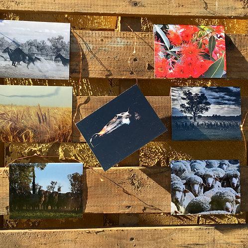 Greeting Card- Set of 7