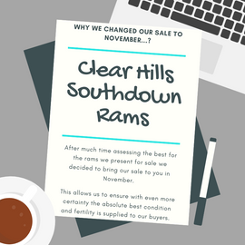 Clear Hills Southdown Rams.png
