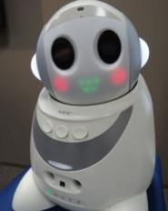 小型ロボットによる見守りシステムの構築