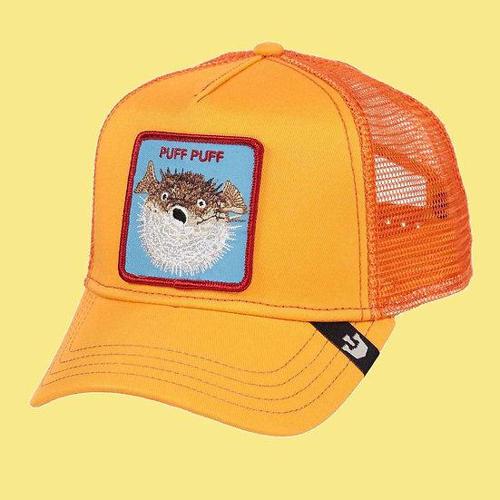 Goorin Bros | Puff Puff | כובעי גורין | אבו-נפחא