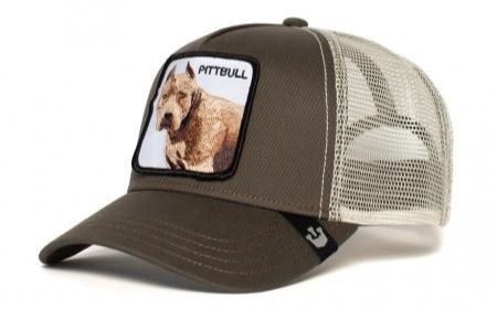 כובעים של גורין - פיטבול