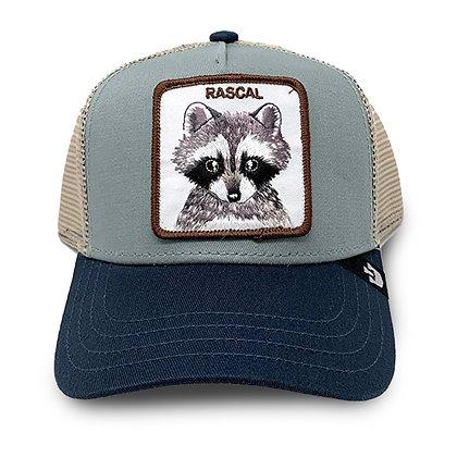 Goorin Bros | Rascal | כובעי גורין | מידת ילדים |  דביבון