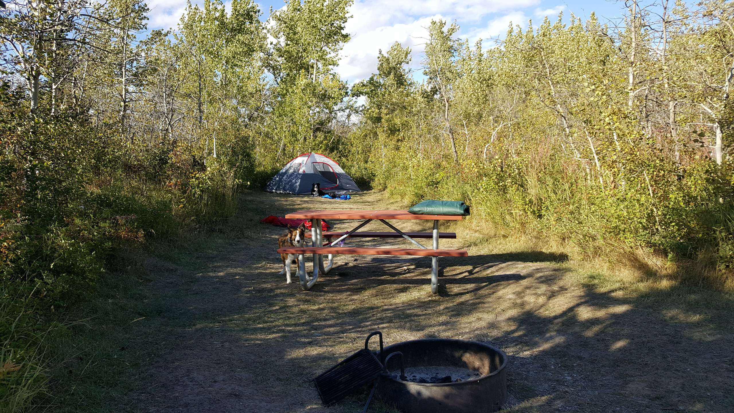 St Mary Campground, site 8