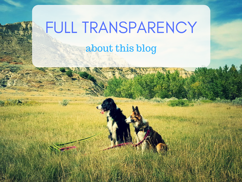 Full Transparency: Why I Started This Blog & My Dreams for the Future
