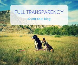 the adventure dog blog