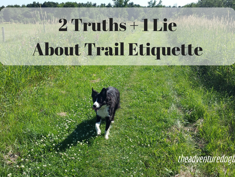 2 Truths & 1 Lie About Trail Etiquette - Hiking with Dogs