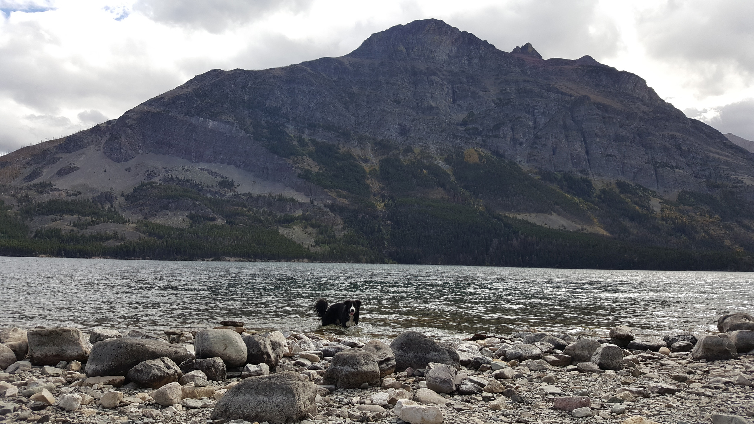 Mica in St Mary Lake