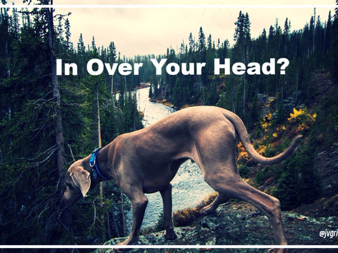 Uh Oh! What to Do When You're In Over Your Head on the Trail