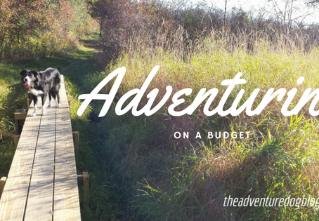 10 Tips for Adventuring on a Budget (with your dog!)