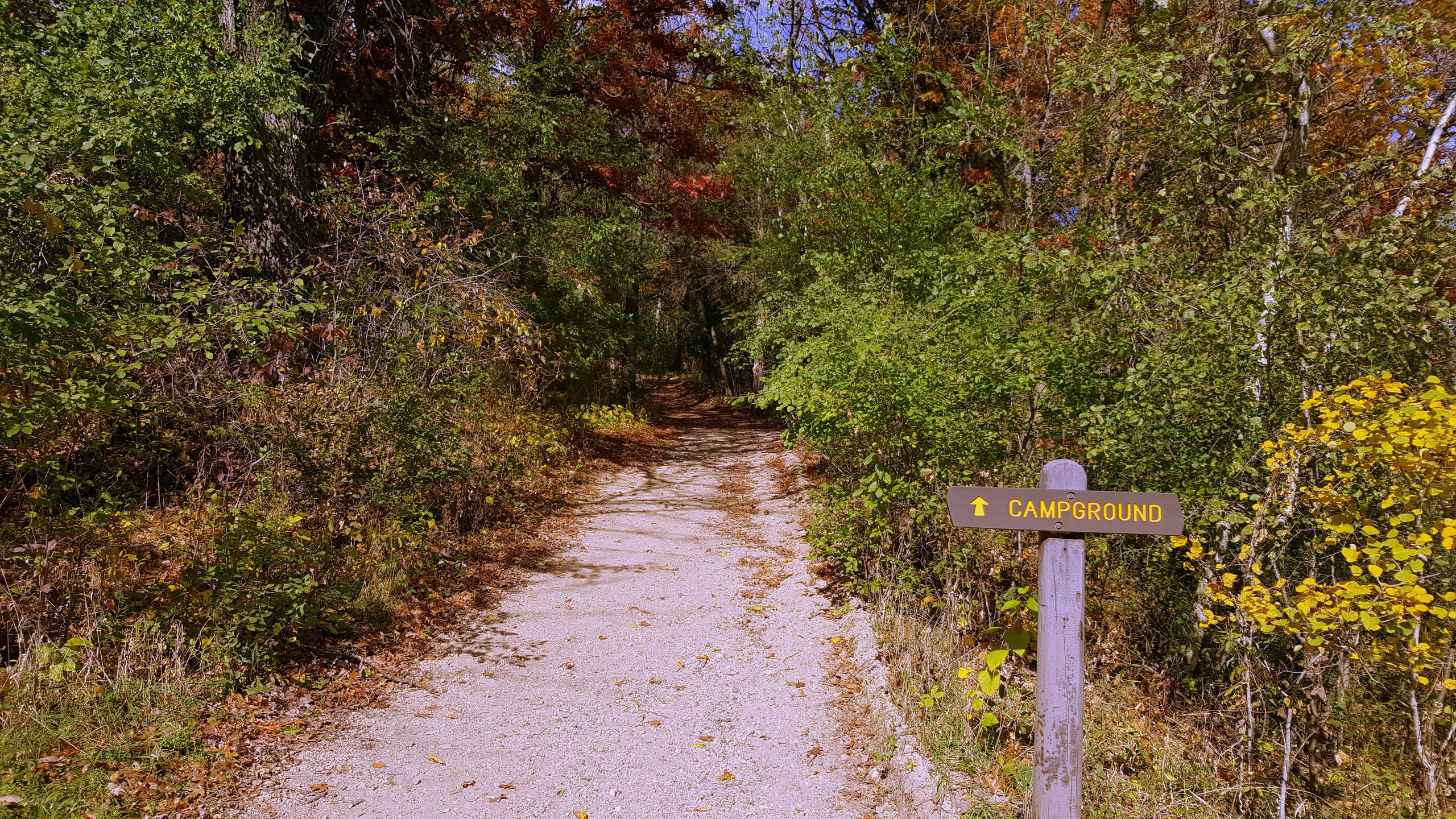 Trail to the campground