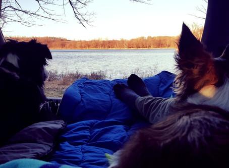 "Adventures in ""Car Camping"""
