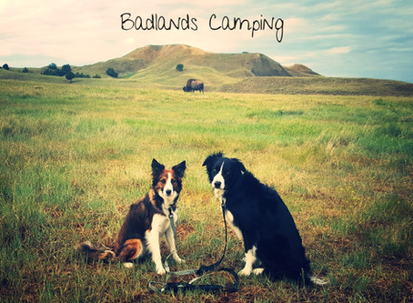 Sage Creek Campground in Badlands National Park South Dakota