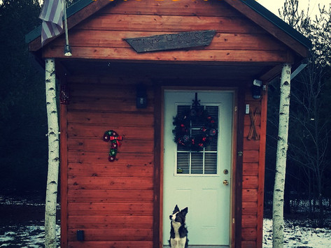 Tiny House Adventure Part 3: All The Details