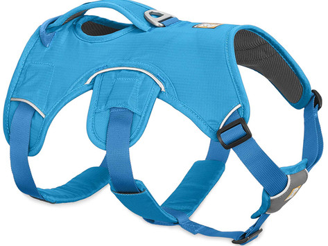 Ruffwear Webmaster Dog Harness Gear Review After Two Years