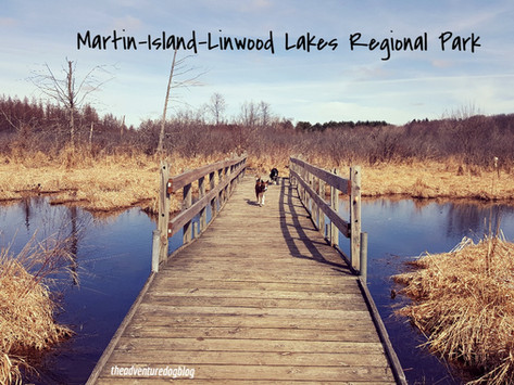 2 Shorts and a Long: Martin-Island-Linwood Lakes Regional Park in Wyoming, MN