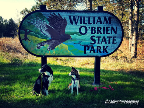 Something for Everyone: William O'Brien State Park in Minnesota