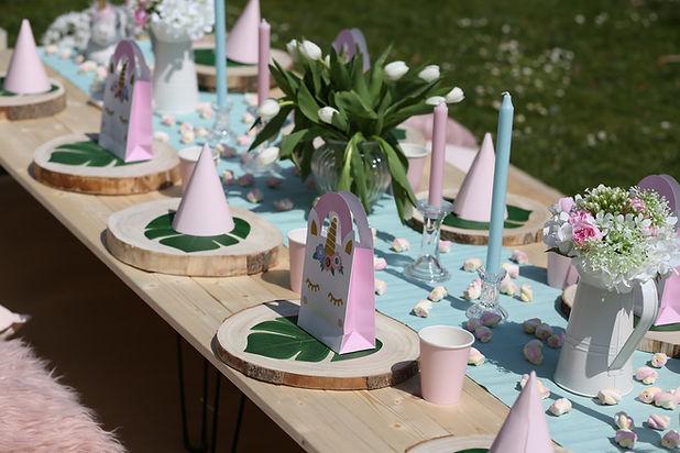 Party in Pink Picknick Einhorn München
