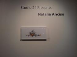 Studio 24 Presents (Flora and Fauna)