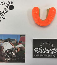 Moon Family Dental mouthguards for the Washington Panthers football team