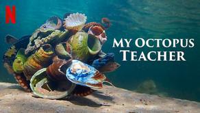 2021 OSCAR BEST DOCUMENTARY FEATURE: MY OCTOPUS TEACHER