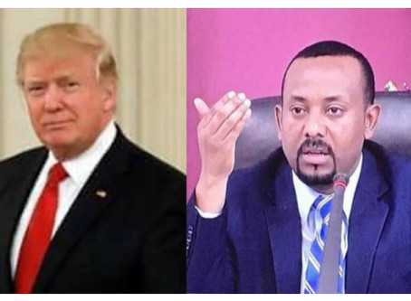 The Trump and Abiy Effect; an Ethiopian Immigrant's Perspective