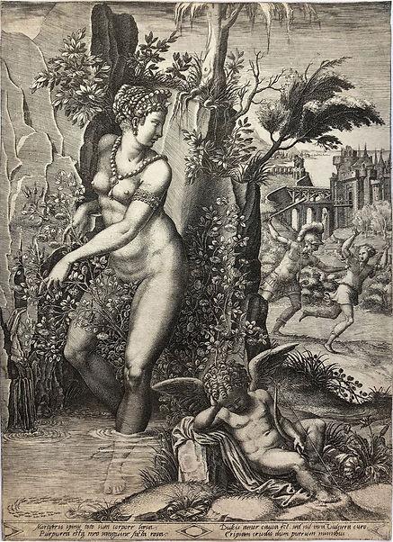 6 RS JOHNSON ghisi - Venus und die rose