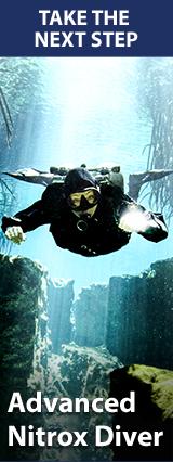 TDI Advanced Nitrox (Продвинутый Найтрокс):  2 дня Максимальная глубина тренировок 40м  Цена 350 Euro (включая снаряжение и сертификат)  Входные требования:  TDI Nitrox Diver / Intro To Tech Diver / Advanced Diver