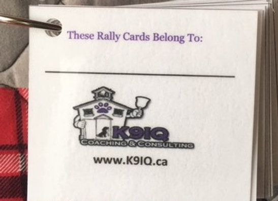 2021 Rally Mini Cards - Novice Only