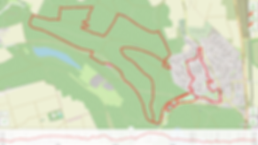 21 KM.png