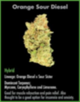 strain cards for wix Jan17_Orange Sour D