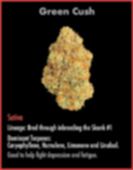 wix strain card Jan9_Green Cush.jpg
