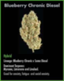 strain cards for wix Dec30_Blueberry Chr