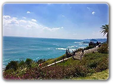青島日南海岸